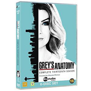 Grey's Anatomy - Sesong 13 (DVD)