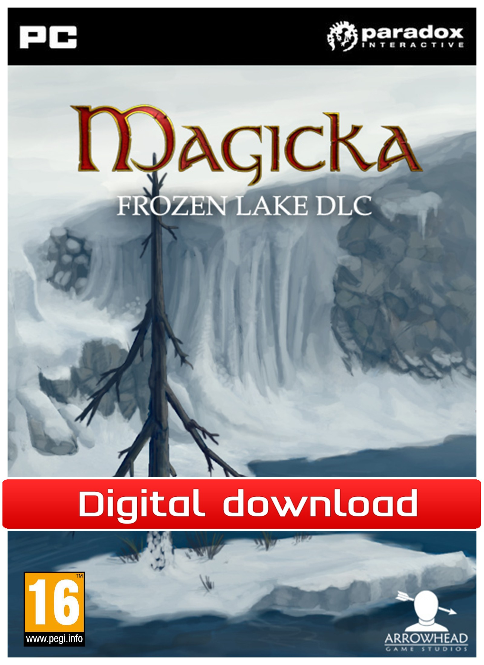 27082 : Magicka: DLC Frozen Lake (PC nedlastning)