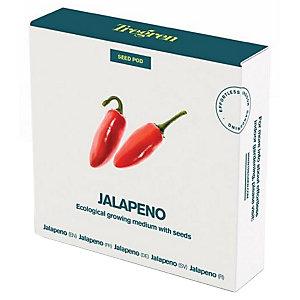Tregren World Kitchen Seedpot —Jalapeno