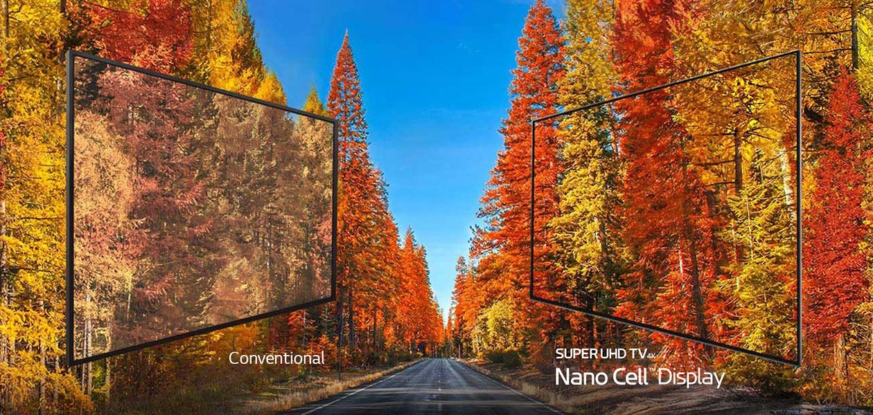 LG SUPER UHD TV giver en utrolig høj farvegengivelse