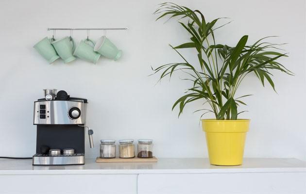 Rengjøring av kaffemaskinen