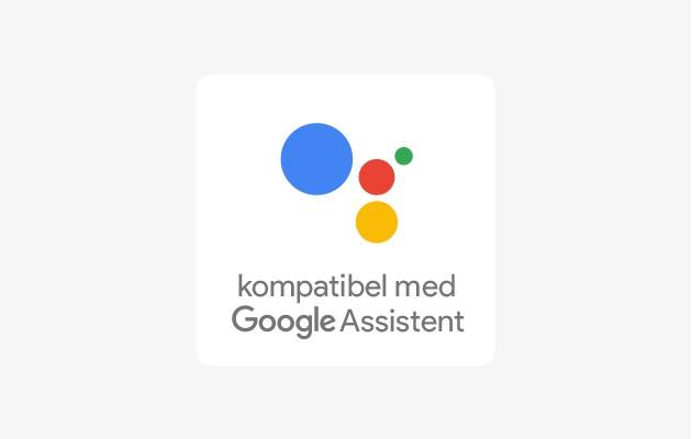 Google Home och Google Home Mini